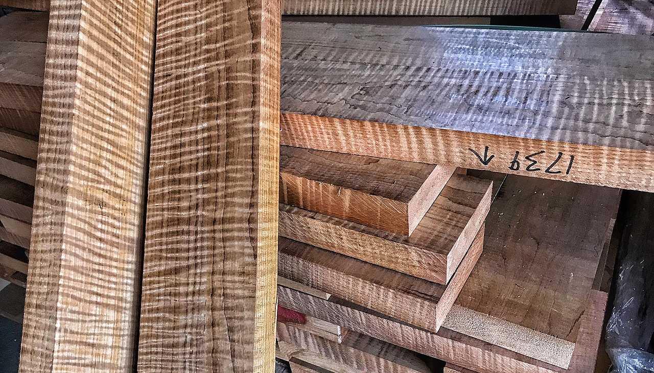 Agathis wood