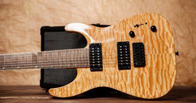 7 String Guitars