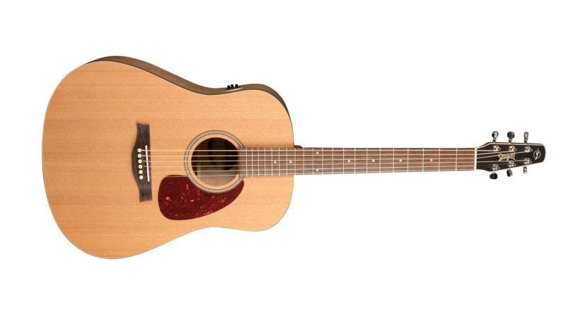 Types Of Guitar - Steel String