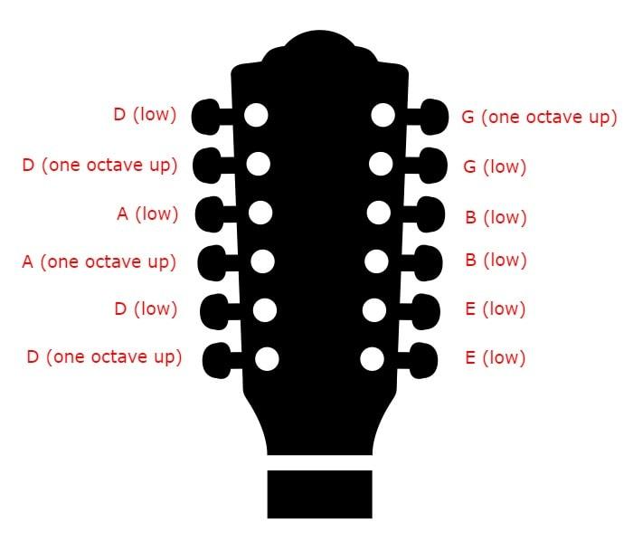 12 string Tuning - Drop D